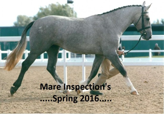Mare Inspections Spring 2016